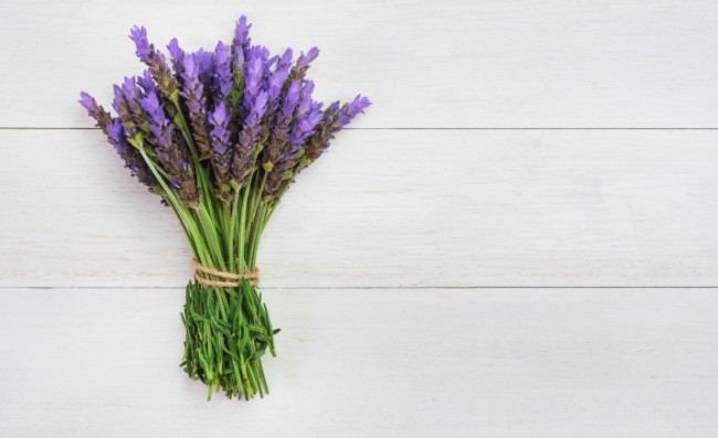 Why-You-Need-More-Lavender-in-Your-Life-e1462955823730